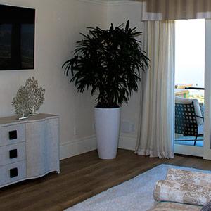 Rhapis Palm in bedroom